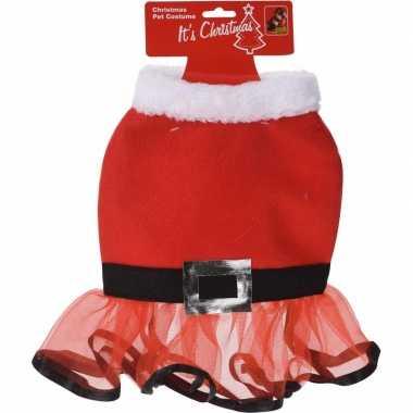 Sexy kerstjurkje de hond 30 cm